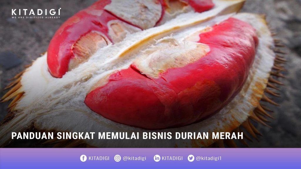 Bisnis Durian Merah